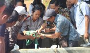 Tingkatkan SDM Pembudidaya Perikanan, Puluhan pembudidaya ikan ikuti pelatihan Pemijahan Ikan