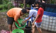 Anak-anak PPA GPMII Beringin Panen perdana budidaya ikan lele di kolam terpal