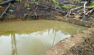 Yusak Warga Kampung Sekolaq Darat Coba Lakukan Ini Untuk Manfaatkan Lahan Leluhur