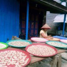 Peran CSR Di Sektor Perikanan Area Pesisir  Sungai Kedang Pahu, Kecamatan Damai